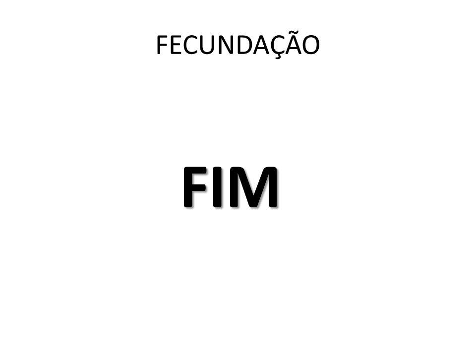 FECUNDAÇÃO FIM