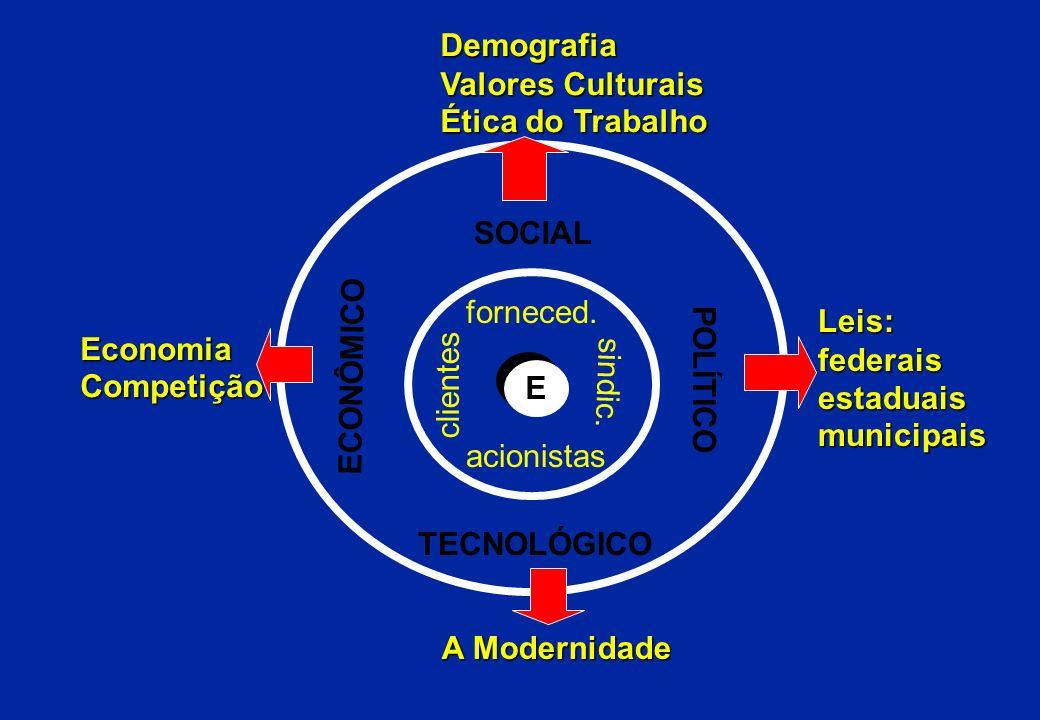 Demografia Valores Culturais. Ética do Trabalho. SOCIAL. forneced. Leis: federais. estaduais.