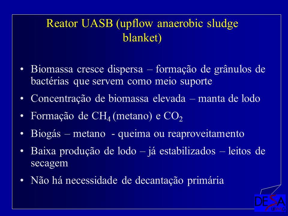 Reator UASB (upflow anaerobic sludge blanket)