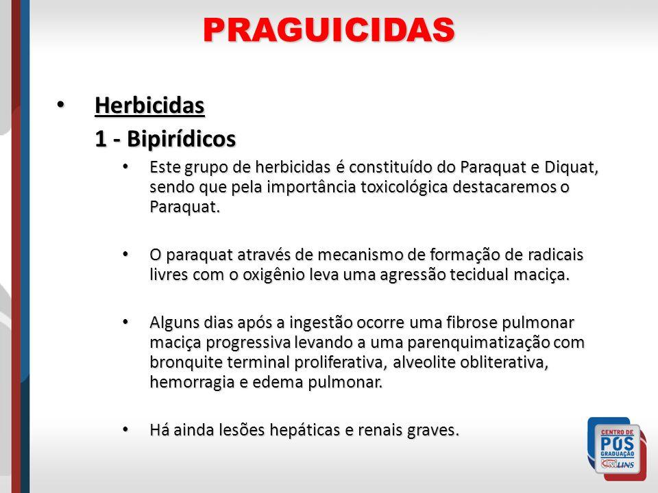 PRAGUICIDAS Herbicidas 1 - Bipirídicos