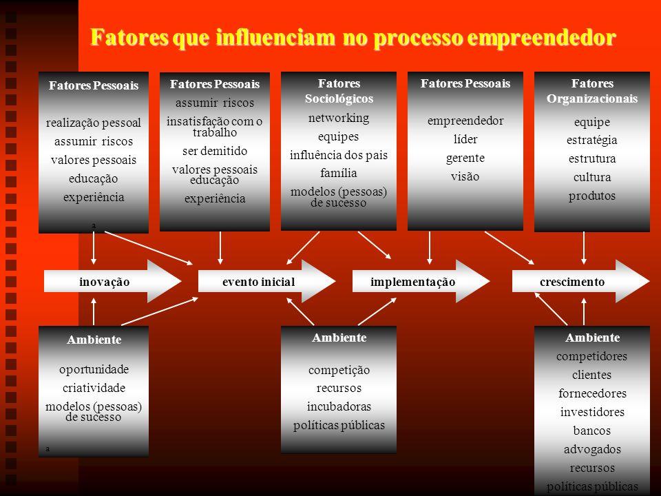 Fatores que influenciam no processo empreendedor