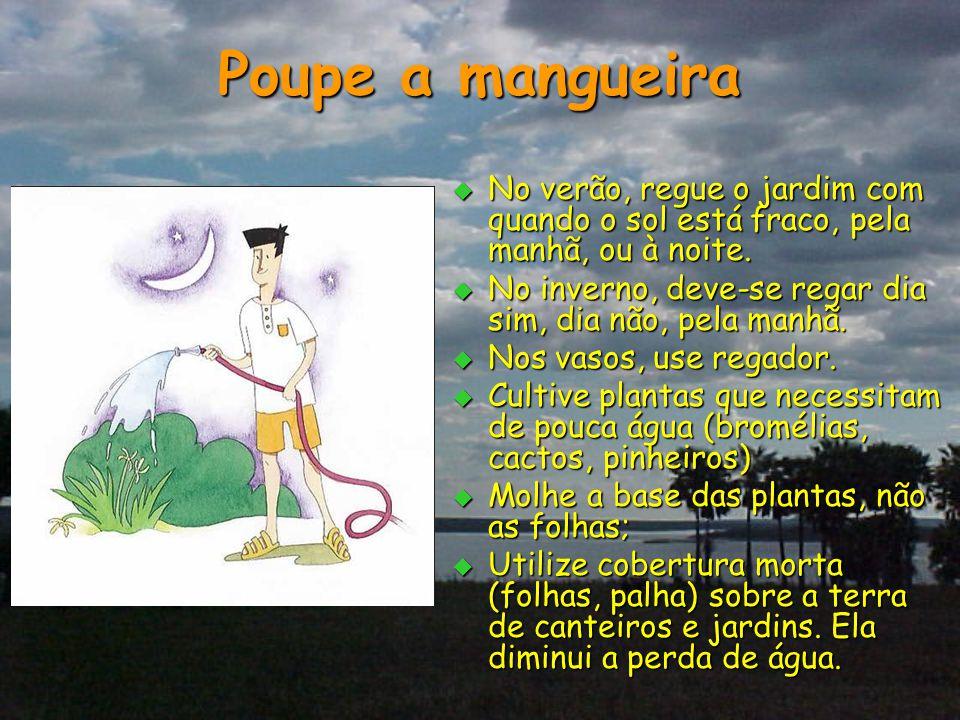 Poupe a mangueira No verão, regue o jardim com quando o sol está fraco, pela manhã, ou à noite.