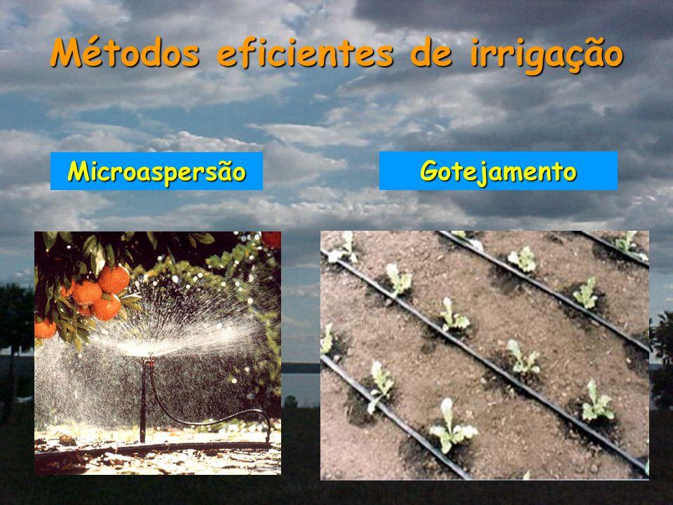 Métodos eficientes de irrigação