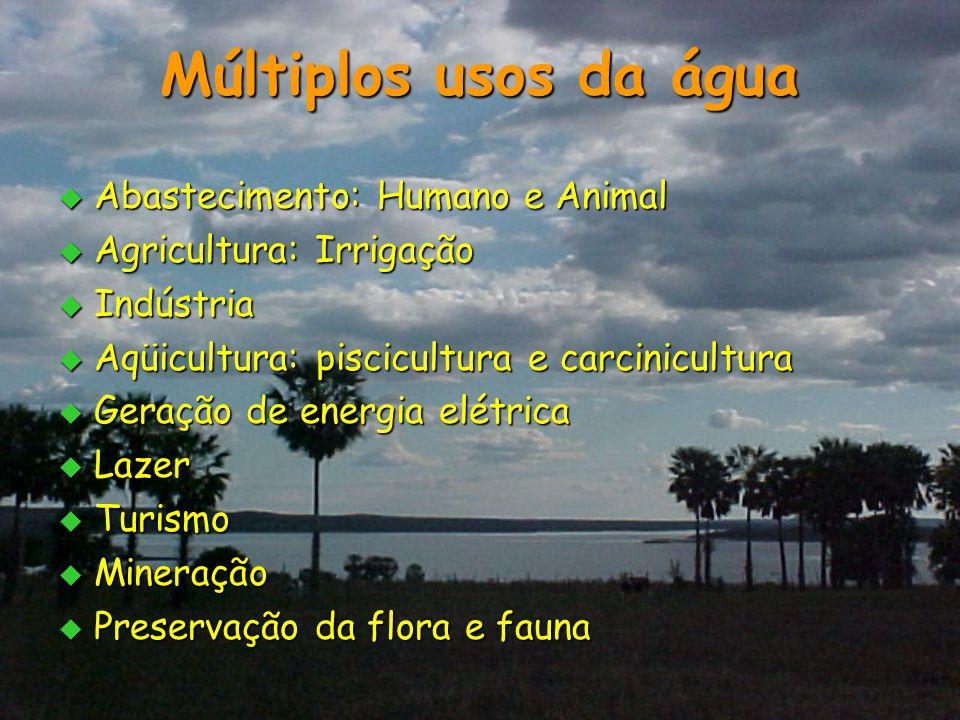 Múltiplos usos da água Abastecimento: Humano e Animal