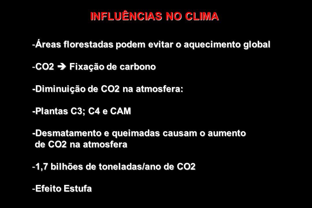 INFLUÊNCIAS NO CLIMAÁreas florestadas podem evitar o aquecimento global. CO2  Fixação de carbono. -Diminuição de CO2 na atmosfera:
