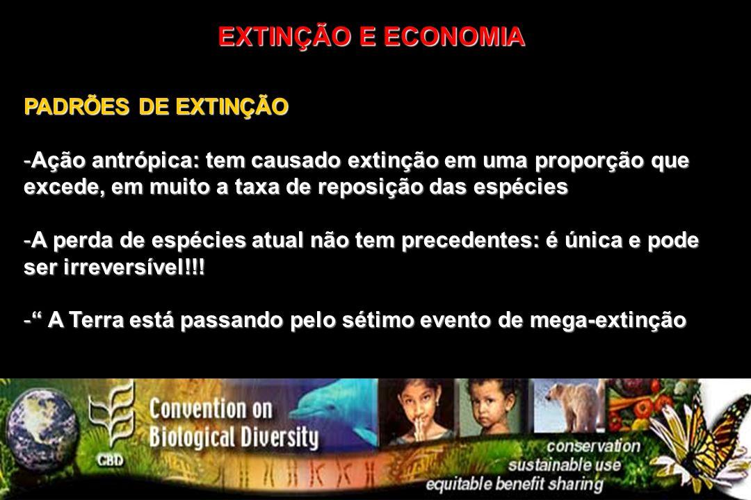 EXTINÇÃO E ECONOMIA PADRÕES DE EXTINÇÃO