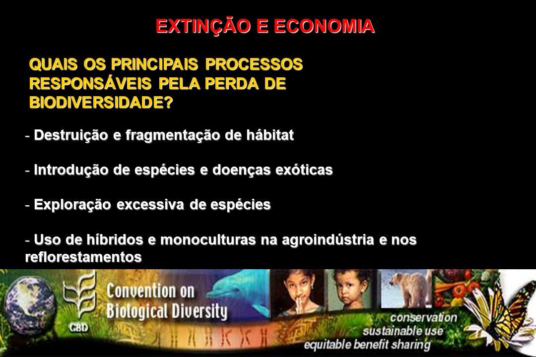 EXTINÇÃO E ECONOMIA QUAIS OS PRINCIPAIS PROCESSOS