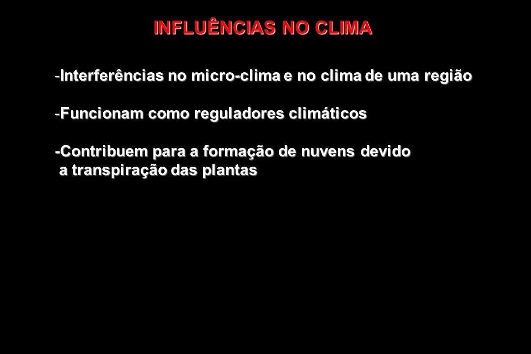 INFLUÊNCIAS NO CLIMA Interferências no micro-clima e no clima de uma região. Funcionam como reguladores climáticos.