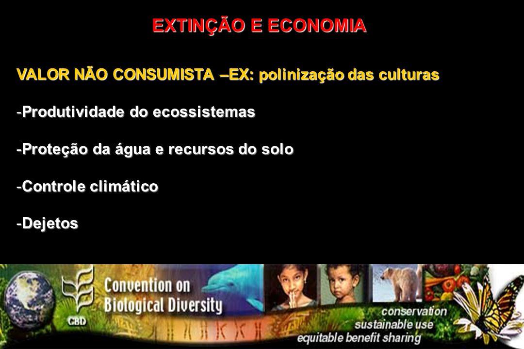 EXTINÇÃO E ECONOMIA VALOR NÃO CONSUMISTA –EX: polinização das culturas