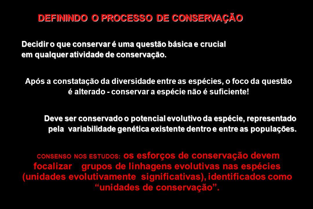 DEFININDO O PROCESSO DE CONSERVAÇÃO