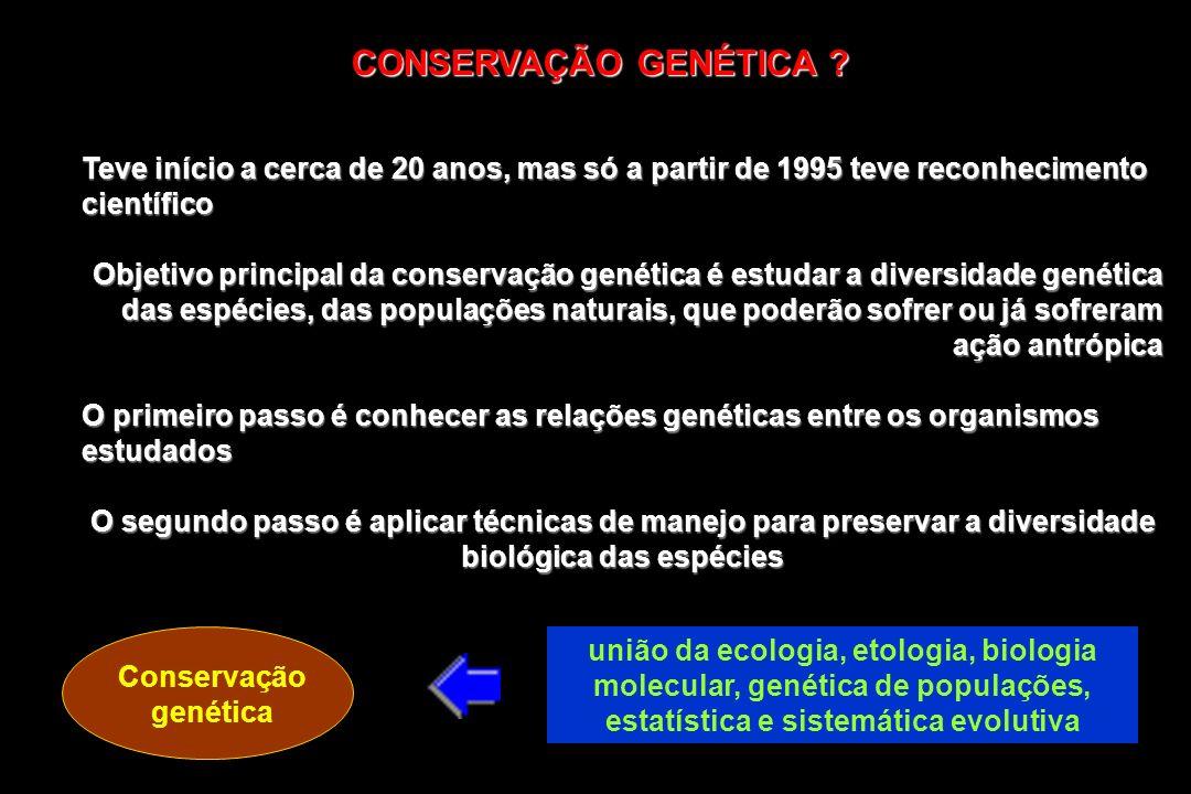 CONSERVAÇÃO GENÉTICA Teve início a cerca de 20 anos, mas só a partir de 1995 teve reconhecimento científico.