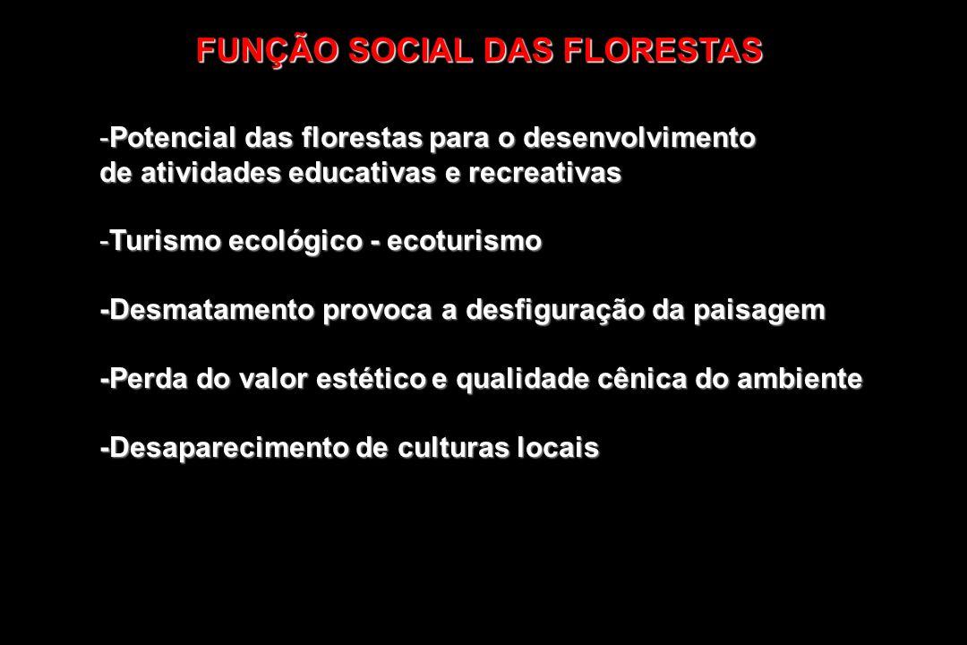 FUNÇÃO SOCIAL DAS FLORESTAS