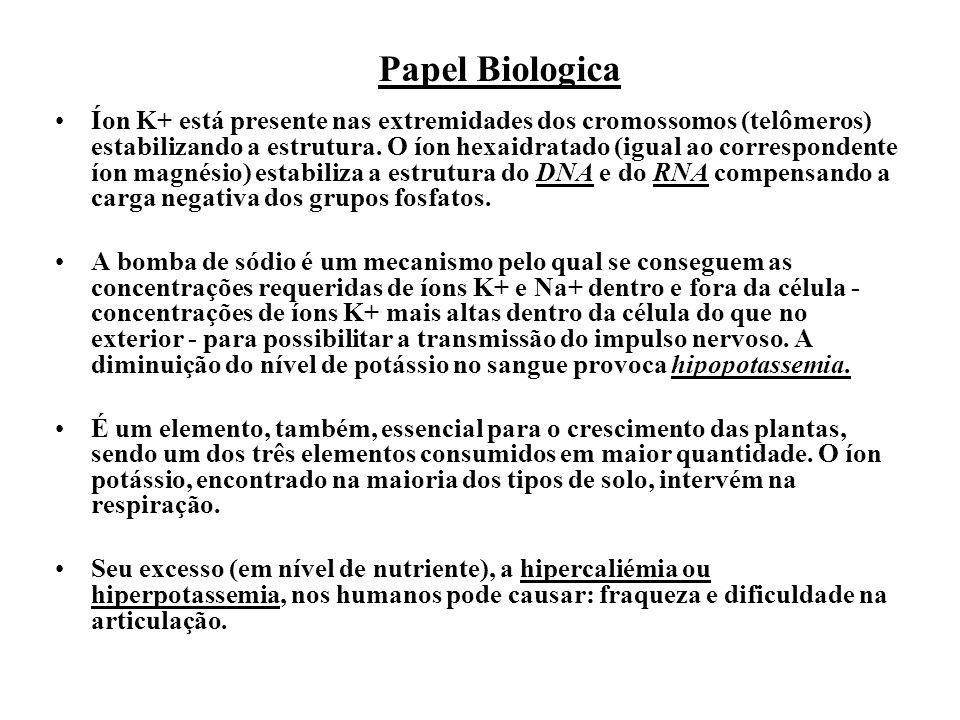 Papel Biologica