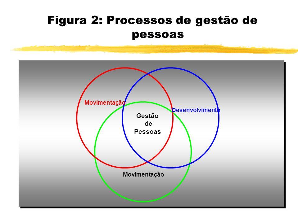 Figura 2: Processos de gestão de pessoas