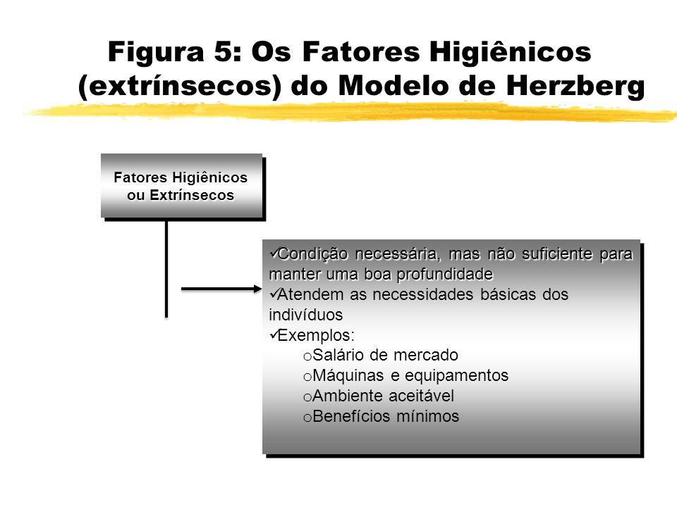 Fatores Higiênicos ou Extrínsecos