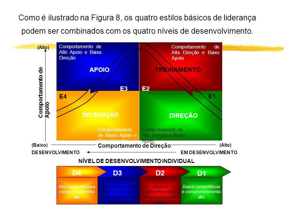 NÍVEL DE DESENVOLVIMENTO INDIVIDUAL