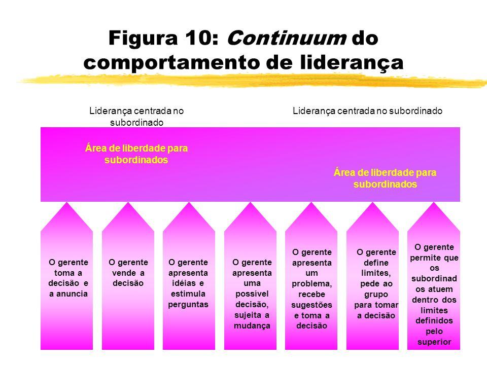 Figura 10: Continuum do comportamento de liderança