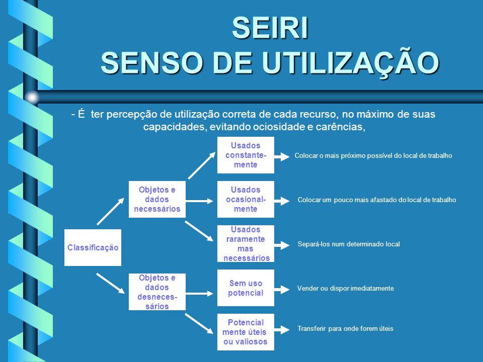 SEIRI SENSO DE UTILIZAÇÃO