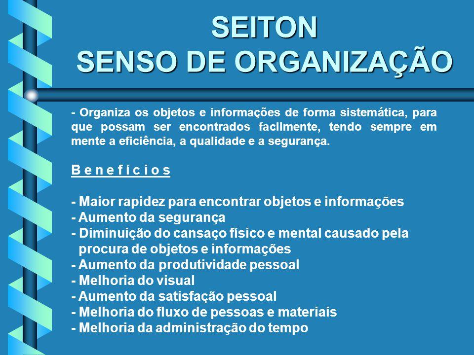 SEITON SENSO DE ORGANIZAÇÃO
