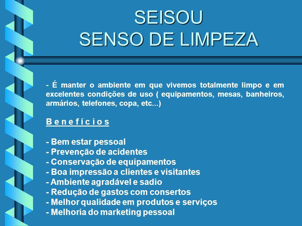 SEISOU SENSO DE LIMPEZA
