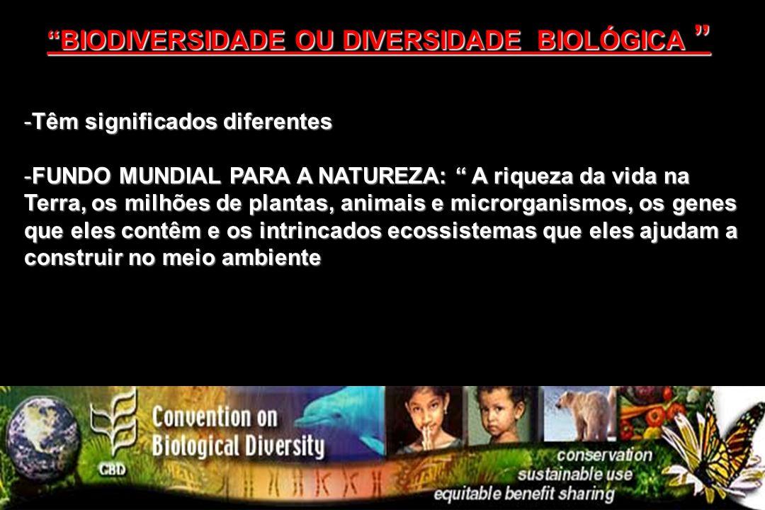 BIODIVERSIDADE OU DIVERSIDADE BIOLÓGICA