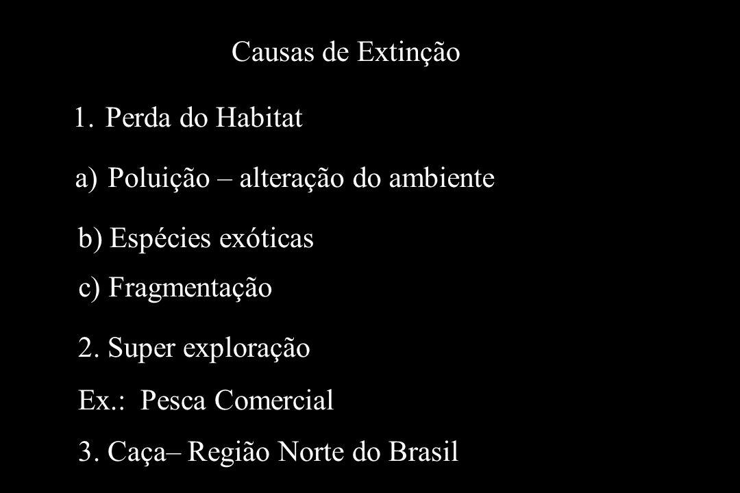 Causas de Extinção Perda do Habitat. Poluição – alteração do ambiente. b) Espécies exóticas. c) Fragmentação.