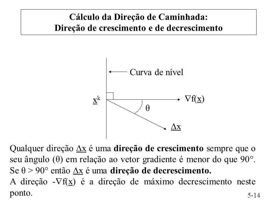 A direção -f(x) é a direção de máximo decrescimento neste ponto.