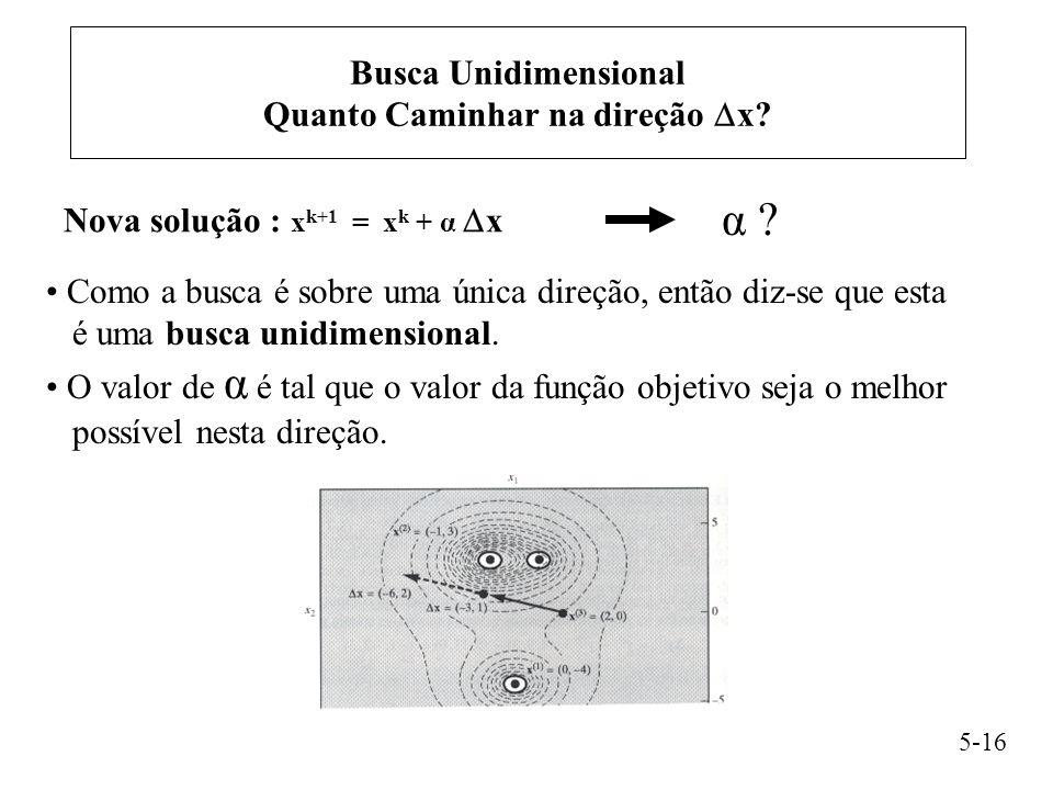 Busca Unidimensional Quanto Caminhar na direção x
