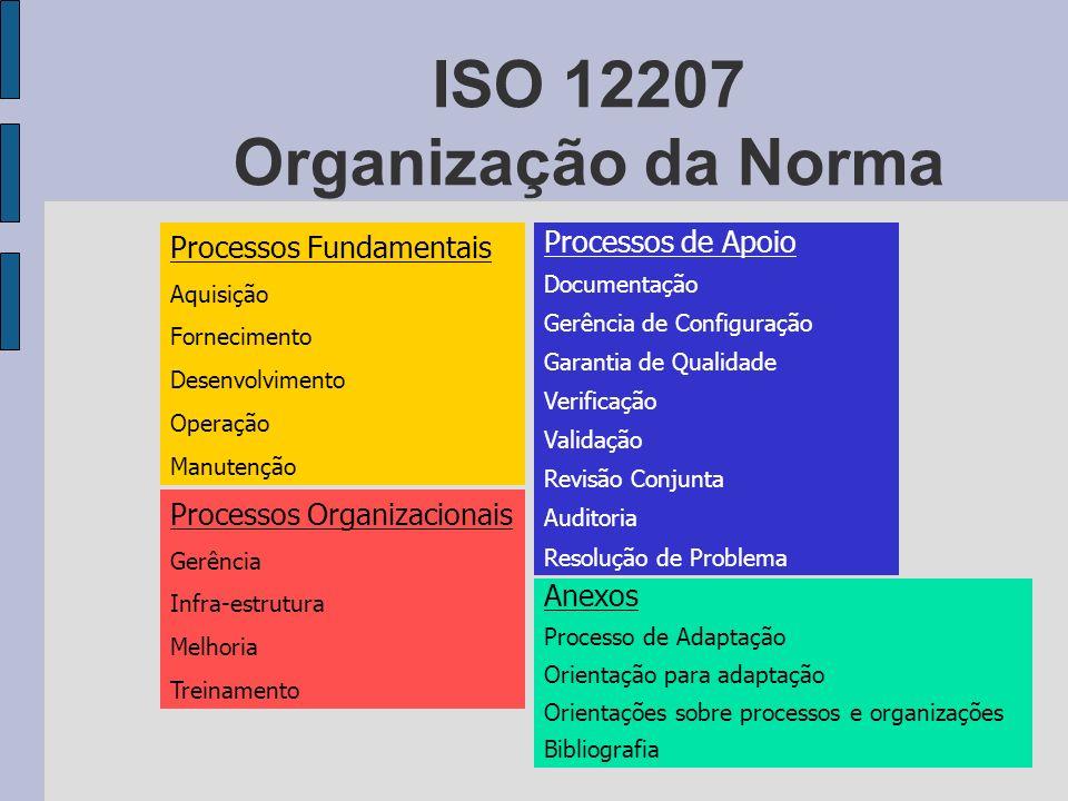 ISO 12207 Organização da Norma
