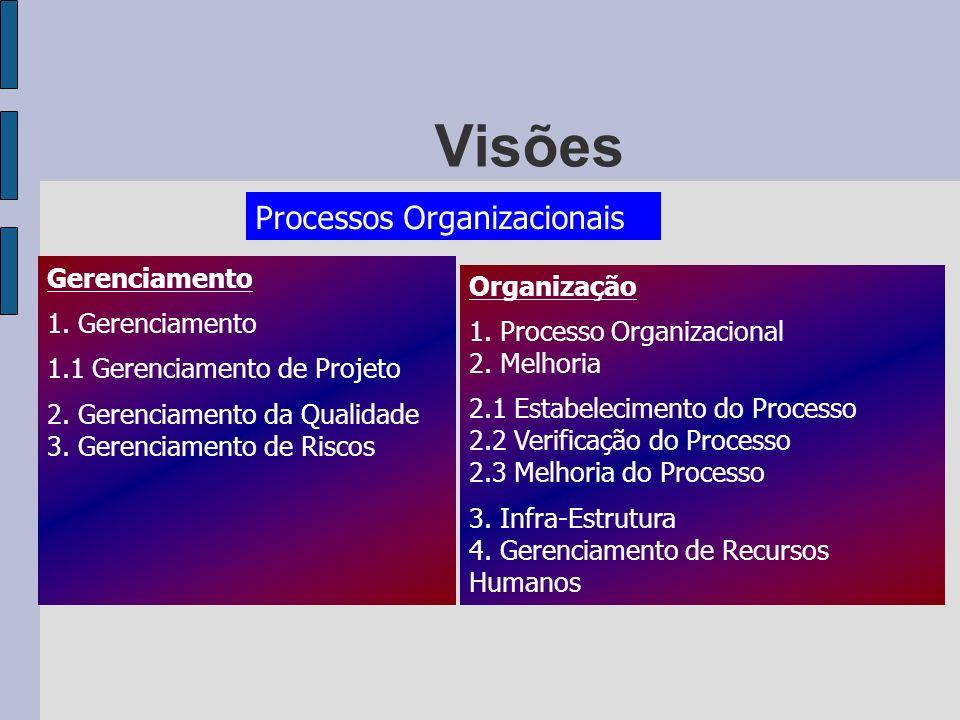 Visões Processos Organizacionais Gerenciamento Organização