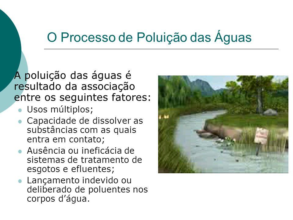 O Processo de Poluição das Águas
