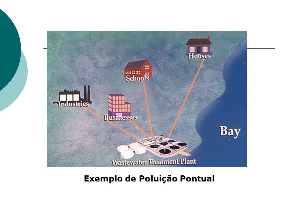 Exemplo de Poluição Pontual