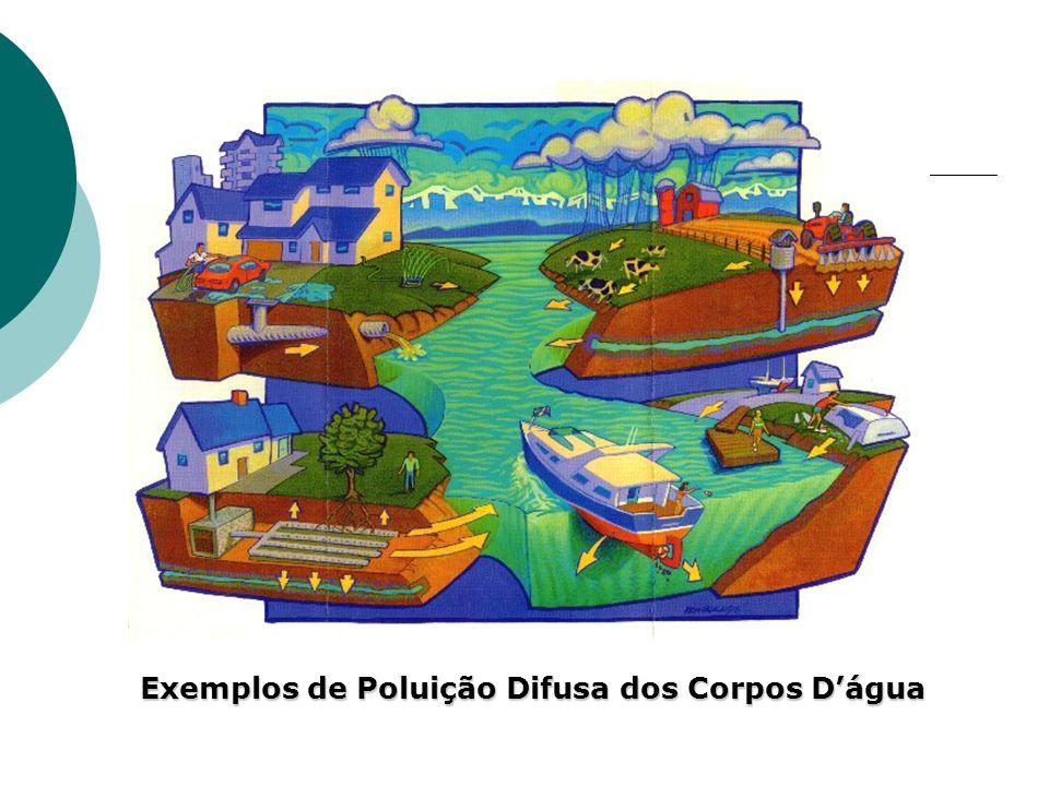 Exemplos de Poluição Difusa dos Corpos D'água