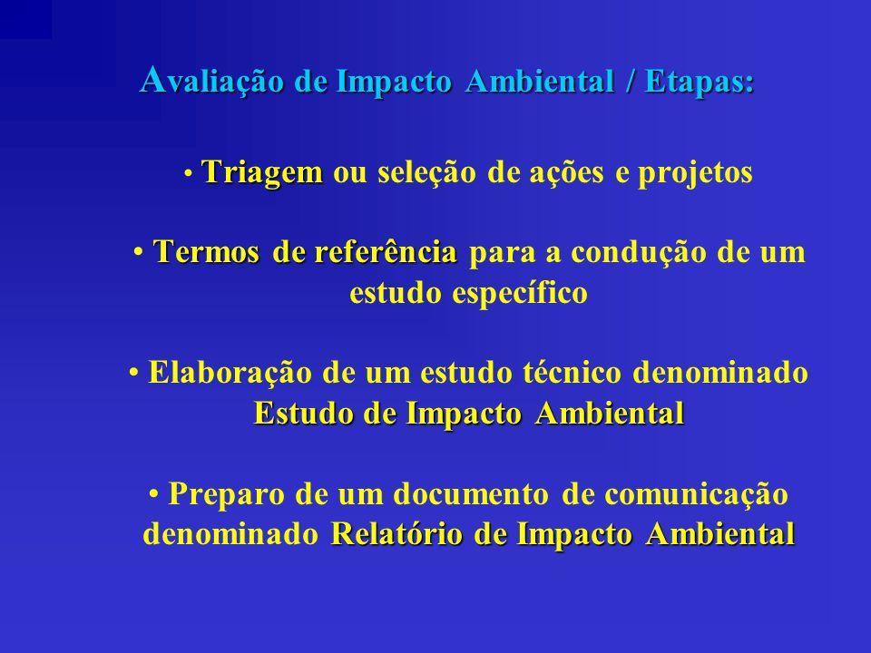 Avaliação de Impacto Ambiental / Etapas: