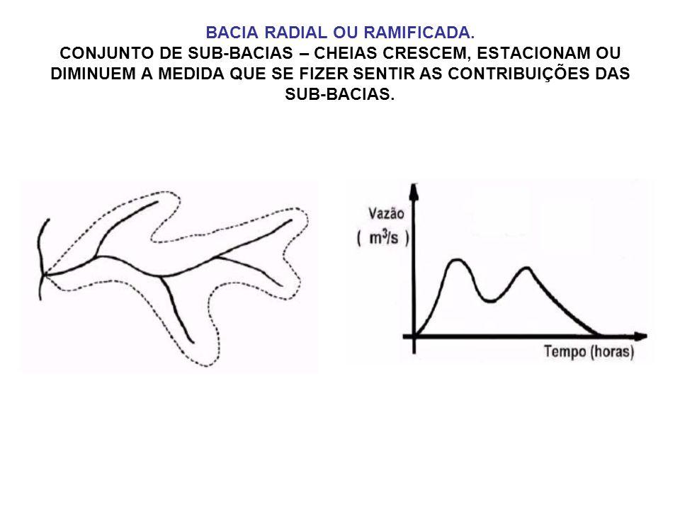 BACIA RADIAL OU RAMIFICADA