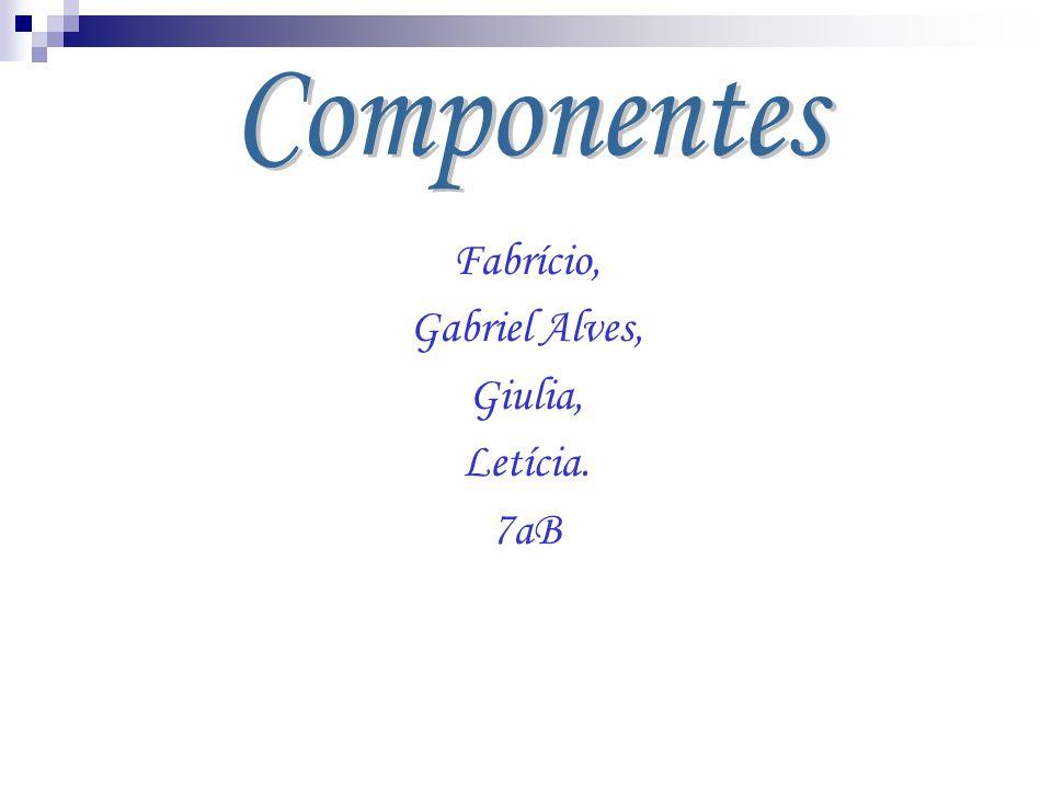 Componentes Fabrício, Gabriel Alves, Giulia, Letícia. 7aB