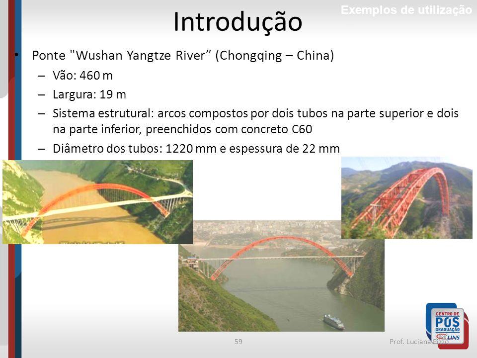 Introdução Ponte Wushan Yangtze River (Chongqing – China) Vão: 460 m