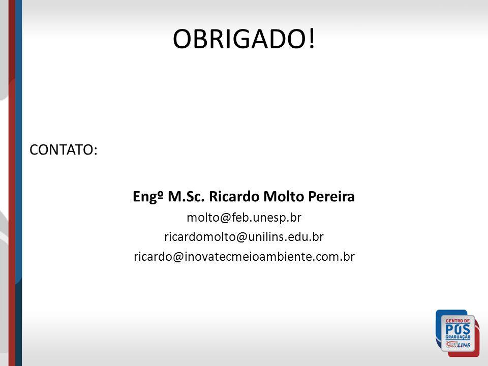 Engº M.Sc. Ricardo Molto Pereira