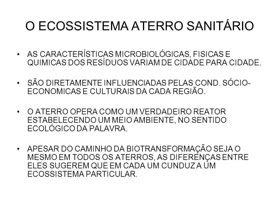 O ECOSSISTEMA ATERRO SANITÁRIO