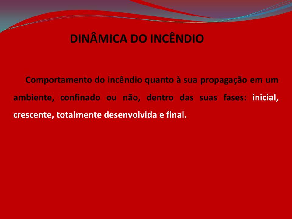 DINÂMICA DO INCÊNDIO
