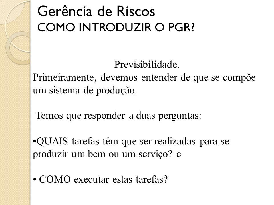 Gerência de Riscos COMO INTRODUZIR O PGR Previsibilidade.