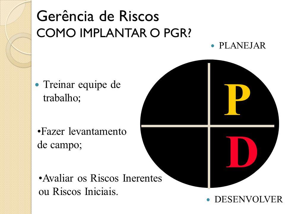 P D Gerência de Riscos COMO IMPLANTAR O PGR