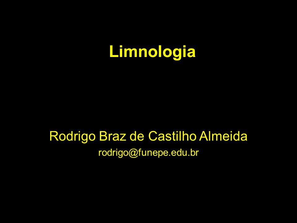 Rodrigo Braz de Castilho Almeida rodrigo@funepe.edu.br