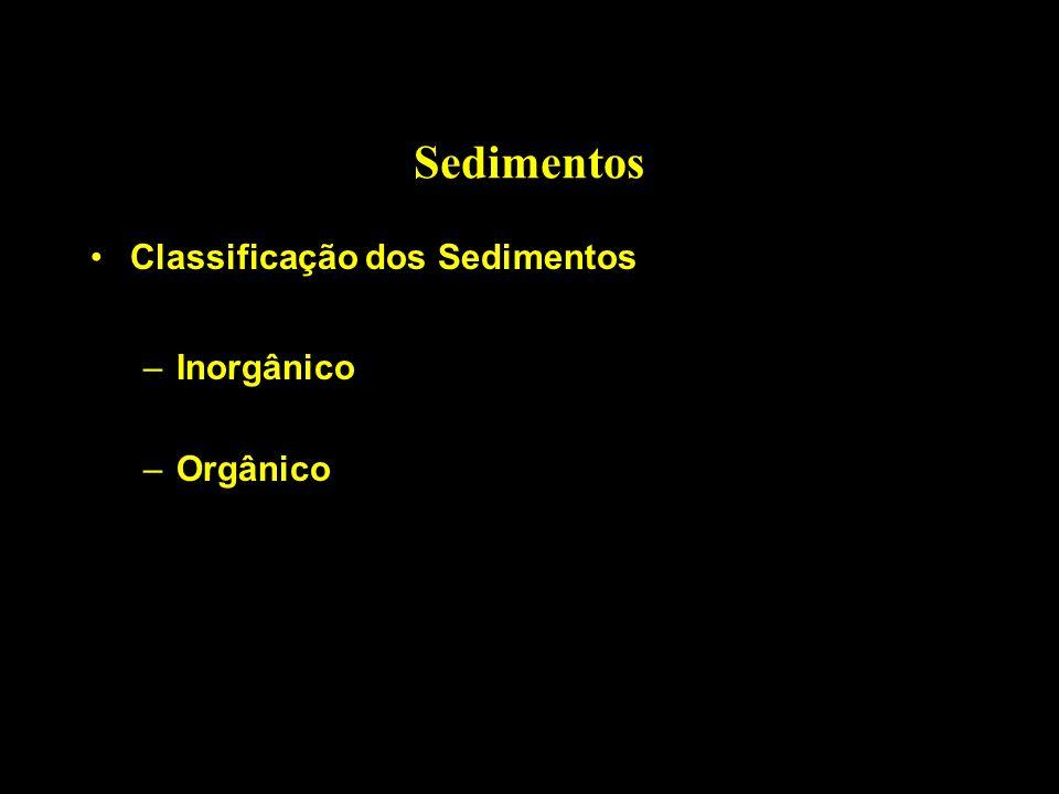 Sedimentos Classificação dos Sedimentos Inorgânico Orgânico