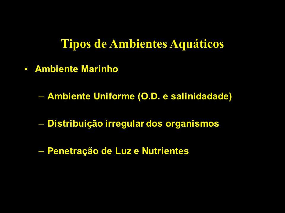 Tipos de Ambientes Aquáticos