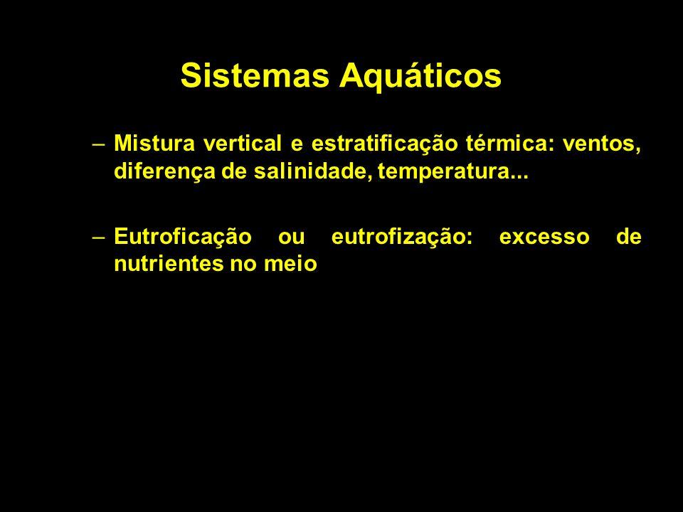 Sistemas Aquáticos Mistura vertical e estratificação térmica: ventos, diferença de salinidade, temperatura...