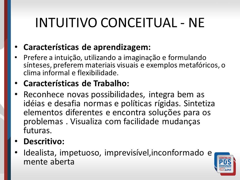 INTUITIVO CONCEITUAL - NE