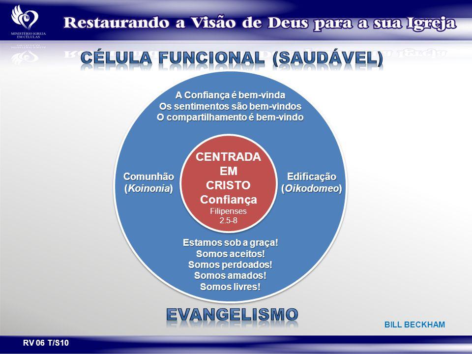 Célula funcional (saudável)