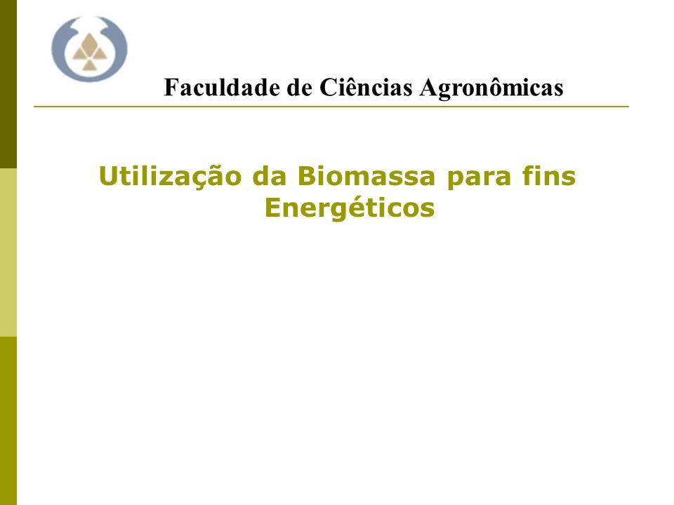 Utilização da Biomassa para fins Energéticos