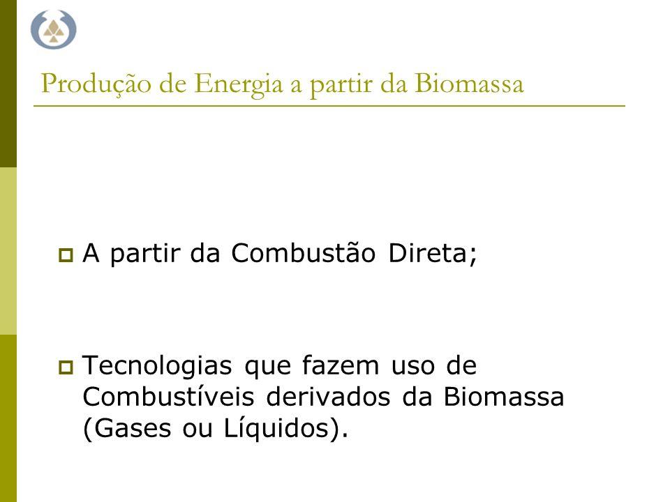 Produção de Energia a partir da Biomassa